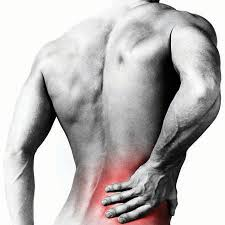 Lower-Back-Pain-GymMembershipFees