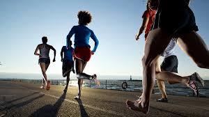 Run-GymMembershipFees