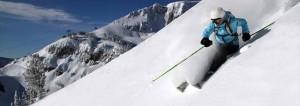 Ski Away-GymMembershipFees