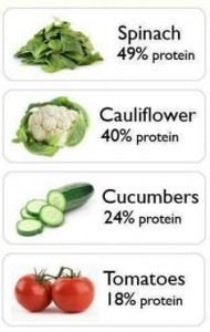 Foods with High Protein Content - GymMembershipFees