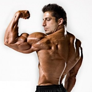 Why do muscles grow and become stronger - GymMembershipFees
